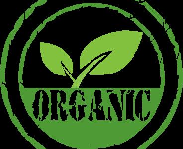 Lesz-e GMO Európában? – Fontos döntés készülődik Brüsszelben