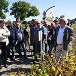 Magyar Szója fajtabemutató rendezvények szeptemberben
